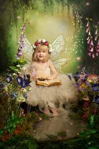 enchanted forest fairies