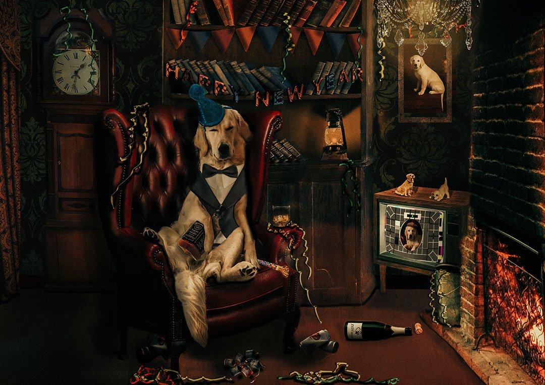 animal artwork composites from Leeds Photography studio